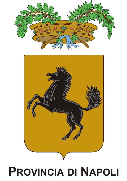 Provincia di Napoli - Logo