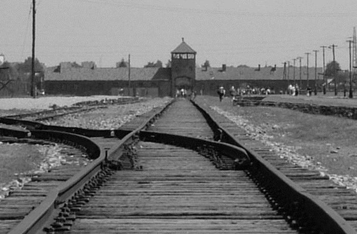 Viaggio della memoria Auschwitz
